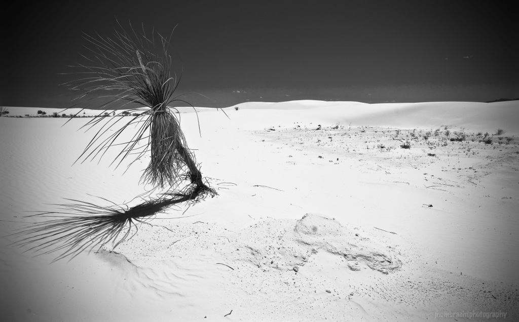White Sands National Monument | New Mexico | Image By Indiana Architectural & Travel Photographer Jason Humbracht