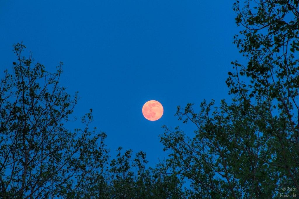 Full Moon | Indianapolis, Indiana | Image By Indiana Architectural Photographer Jason Humbracht
